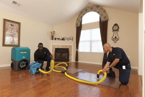 Why Should You Hire A Professional Water Damage Restoration Services Company?