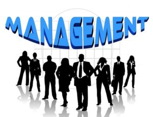 Organizational Best management styles